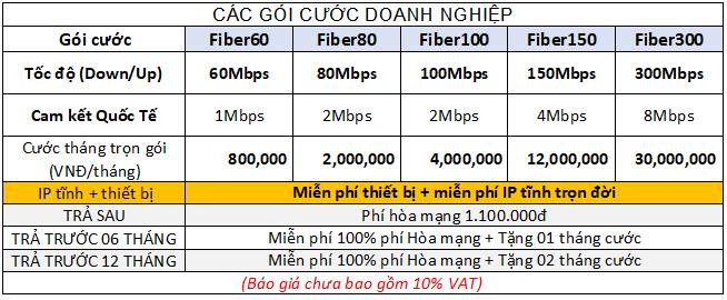Khuyến mãi lắp đặt cáp quang VNPT TPHCM cho Doanh nghiệp